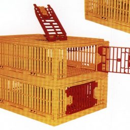 Plastic Poult Transport Crate