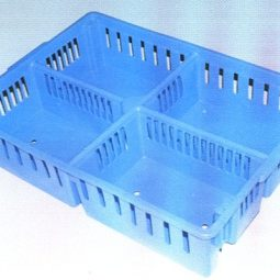 Plastic Chick Transport Crate